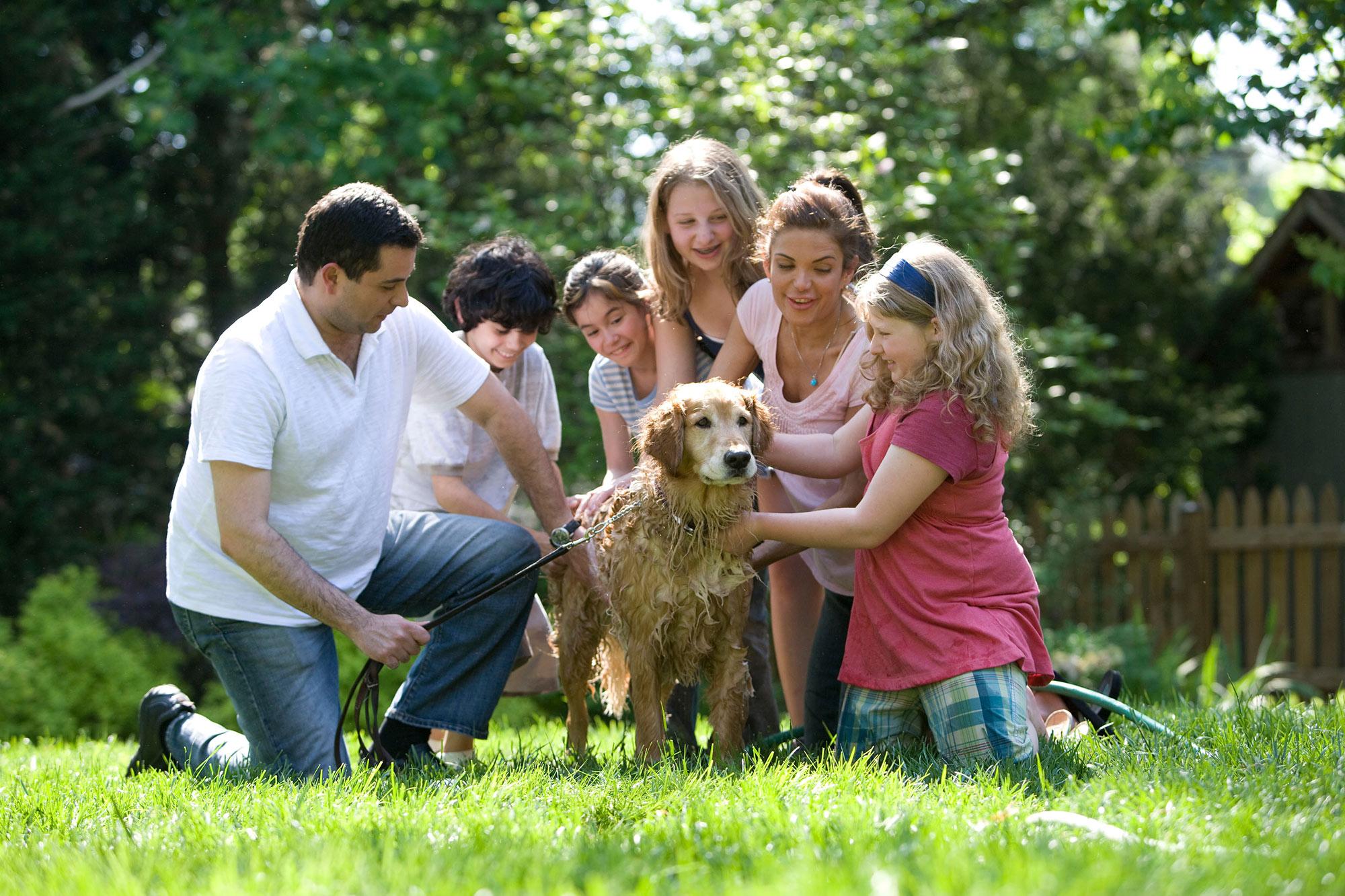 Trevalgan Farm - Family